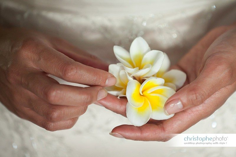 wedding flower in fiji. the name is plumeria