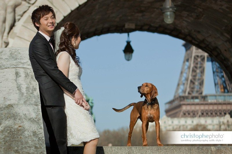 prewedding photography in front of the eiffel tower, Paris with a dog showing up